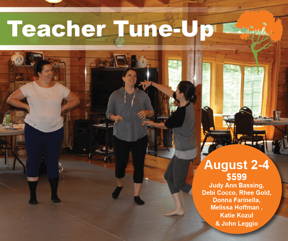 DLRC Summer 2019 Teacher Tune-Up - FB